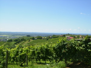 Pogled iz Lendavskih Goric- Radenci so tam daleč za obzorjem.